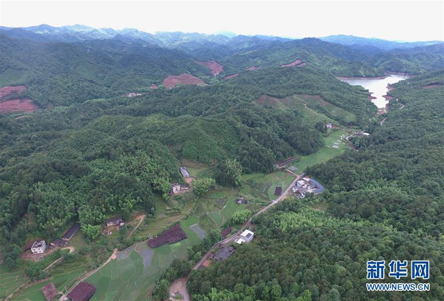 (经济)(1)福建:林改促进生态文明建设