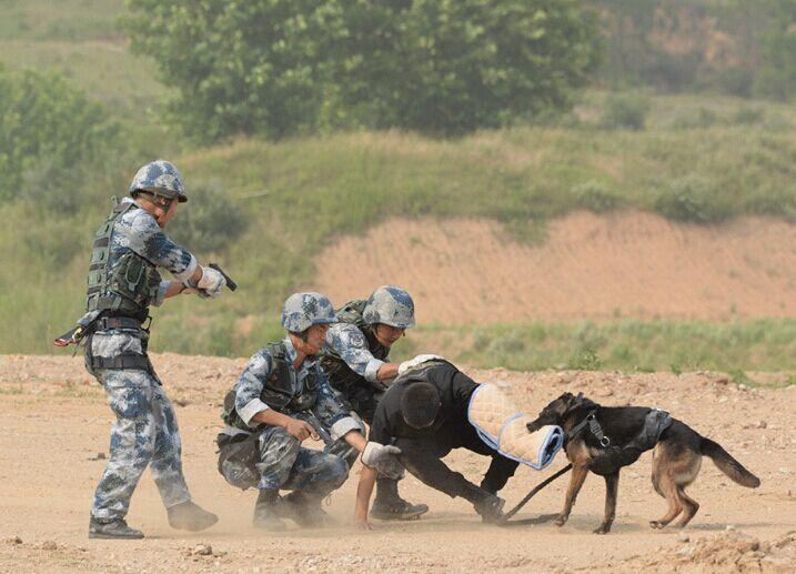 围观丨空降兵的反恐演练