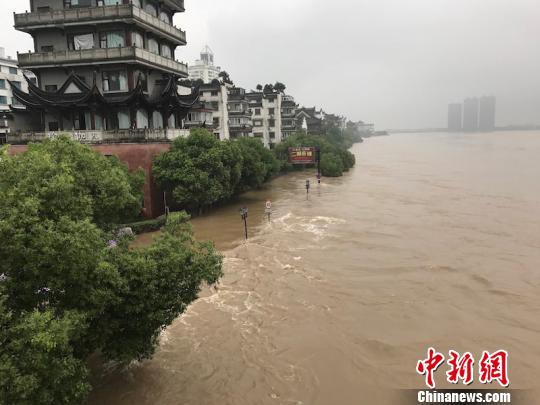 持续暴雨,兰江水位猛涨 奚金燕 摄