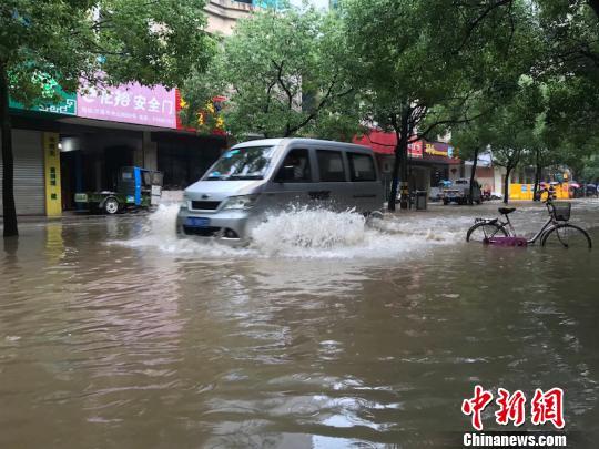 持续暴雨,城区漫水 奚金燕 摄