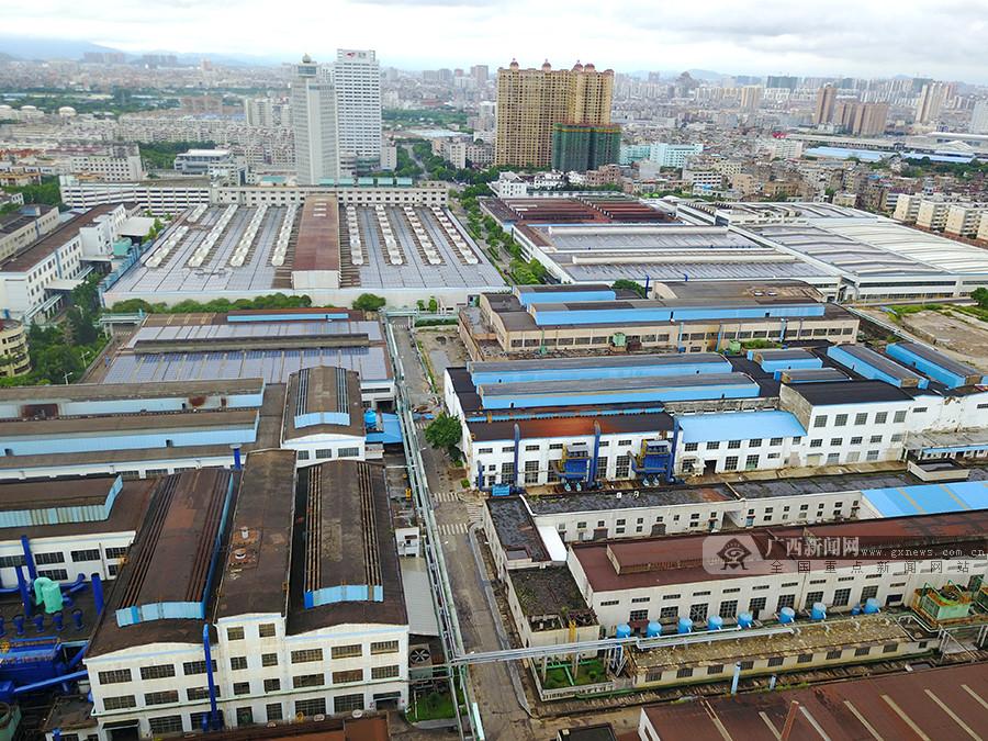 高清:网媒大咖聚焦玉林工业、中药产业发展