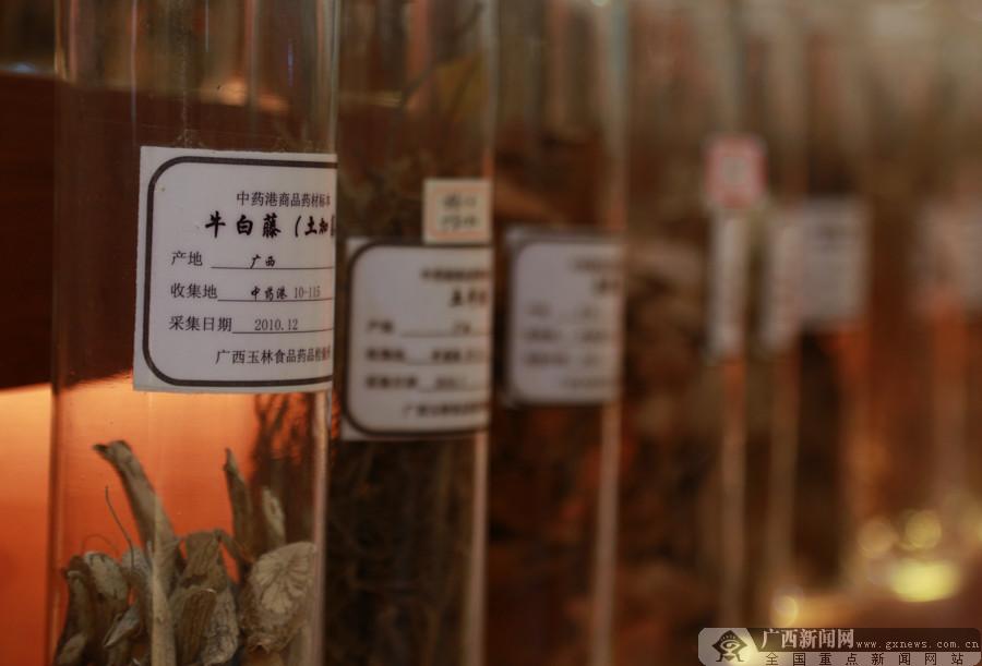 """借力""""互联网+"""" 玉林中药港打造""""大数据""""平台"""