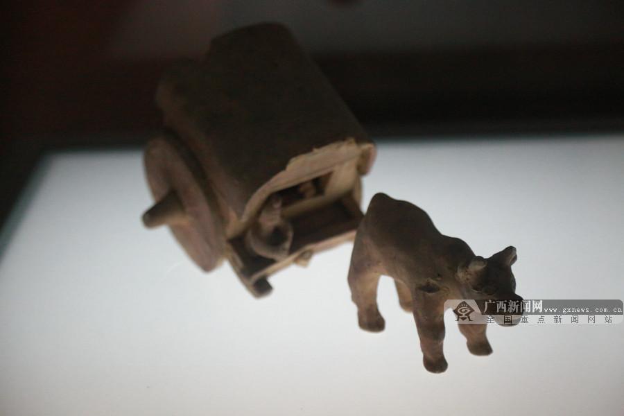 高清:网媒大咖在梧州品味茶香感受悠久历史