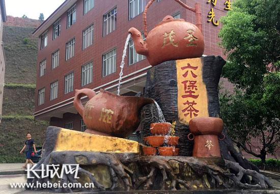 【长城网】记者走进梧州茶企 赏茶艺品茶香