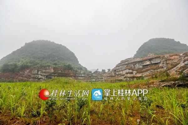 记者在探访漓江风景名胜区范围内几家采石场发现,每一家采石场复绿