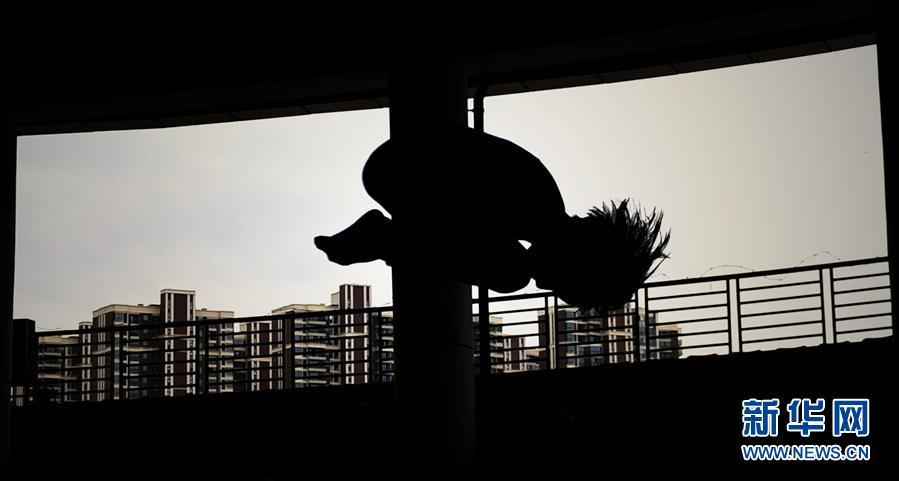 (体育)(2)全民健身――广西少儿跳水锦标赛举行