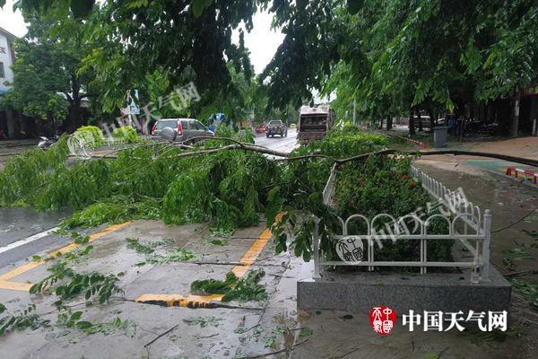 台风渐远华南仍有暴雨 【山东等地】防强降雨