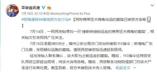 江苏连云港一携带狂犬病毒藏獒出逃警方:已被击毙