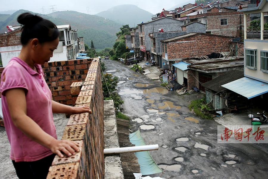 百色市阳圩镇:60公里烂路挡了6万亩芒果销路(图)