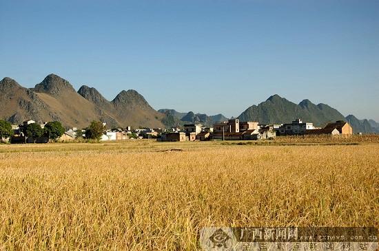 传承乡村文化 建设美丽乡村
