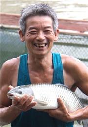 农民在家门口网箱养鱼致富