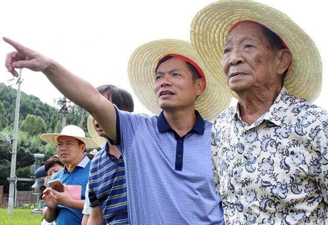 袁隆平指导灌阳农民种水稻(图)