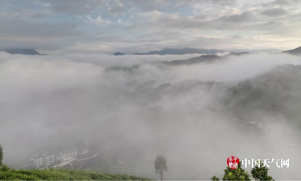 贺州:昭平大脑山清晨云雾缭绕 风景多娇