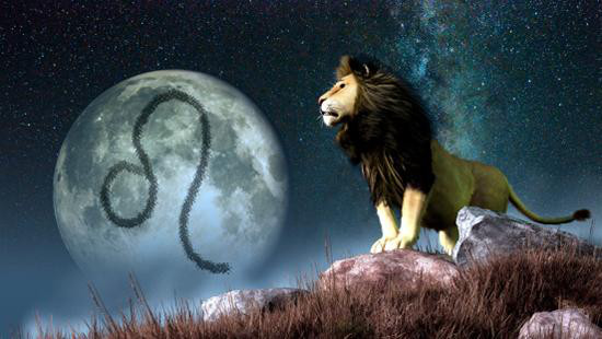 当狮子座遇见皇冠