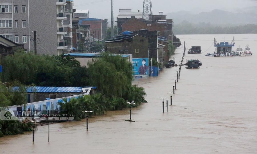 高清:融安遭暴雨袭击 融江江水暴涨部分道路中断