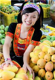 丰收的芒果