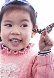 女孩与蝴蝶