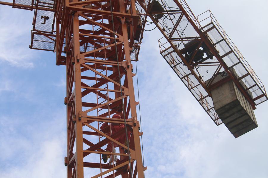 宜州:上百只马蜂围袭 2人被困35米高塔吊上(图)
