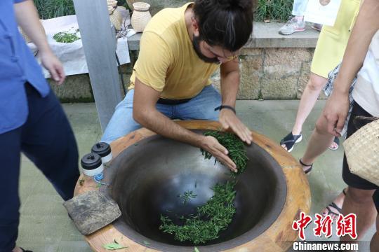 图为:德国汉诺威孔子学院学生体验炒茶。 王潇婧 摄