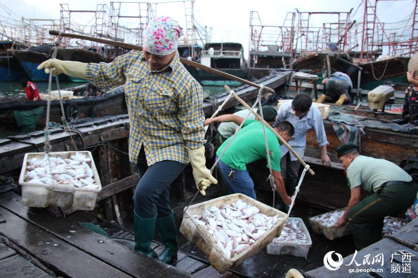 广西北海:开渔归来!边防官兵与渔民共享丰收喜悦