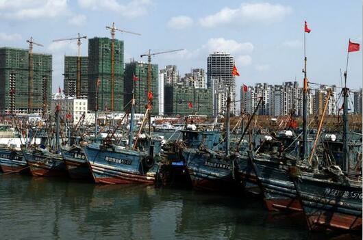 开渔在即 温州最新鲜、最齐全的海鲜去这些地方买