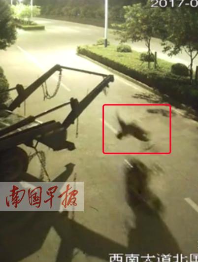 """8月22日焦点图:男子骑车遭环卫车铁链""""锁喉"""""""