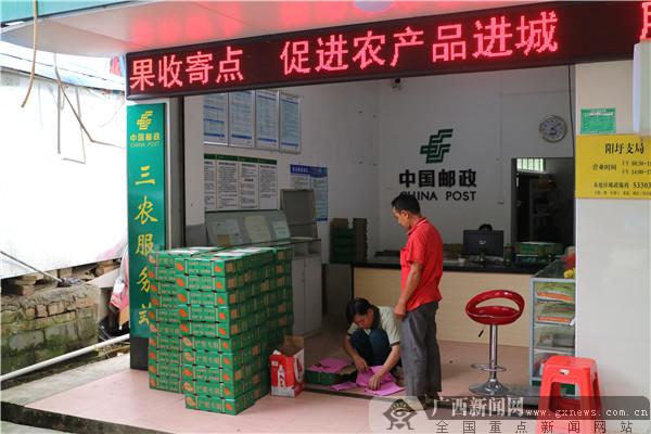 """广西邮政为精准扶贫加""""邮"""""""
