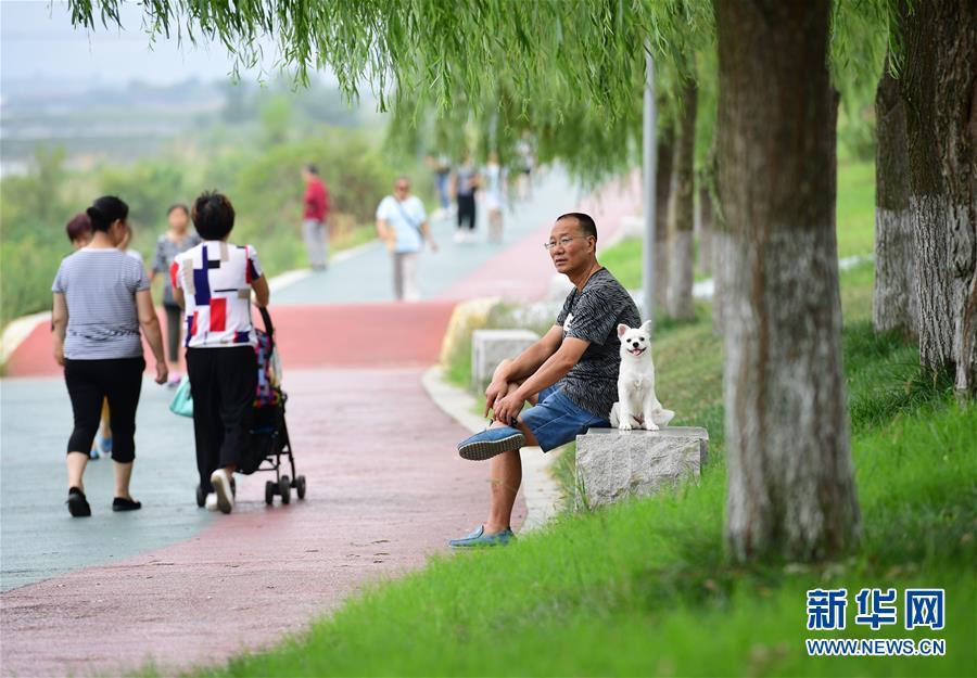 (环境)(1)陕西安康:防洪堤变身市民休闲乐园