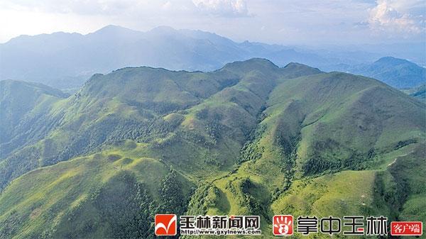 北流市扶新佰仁乡村生态旅游风景:亲山玩水避暑好去处