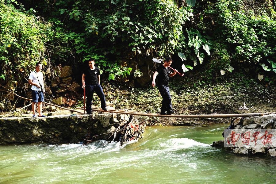 河池:龙江河惊现鳄鱼 市民近期不要下河游泳钓鱼
