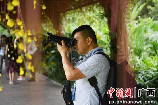 9月4日,海外华文媒体记者在青秀山风景区兰园拍摄兰花。俞靖 摄