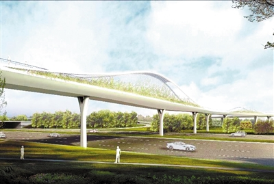 该桥下部结构的v形墩轻盈优美,托起呈微弧形,犹如一道月牙的桥身.
