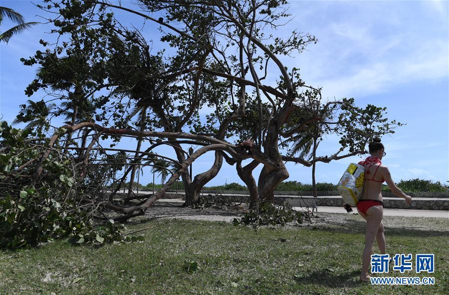 (国际)(2)飓风过后的迈阿密