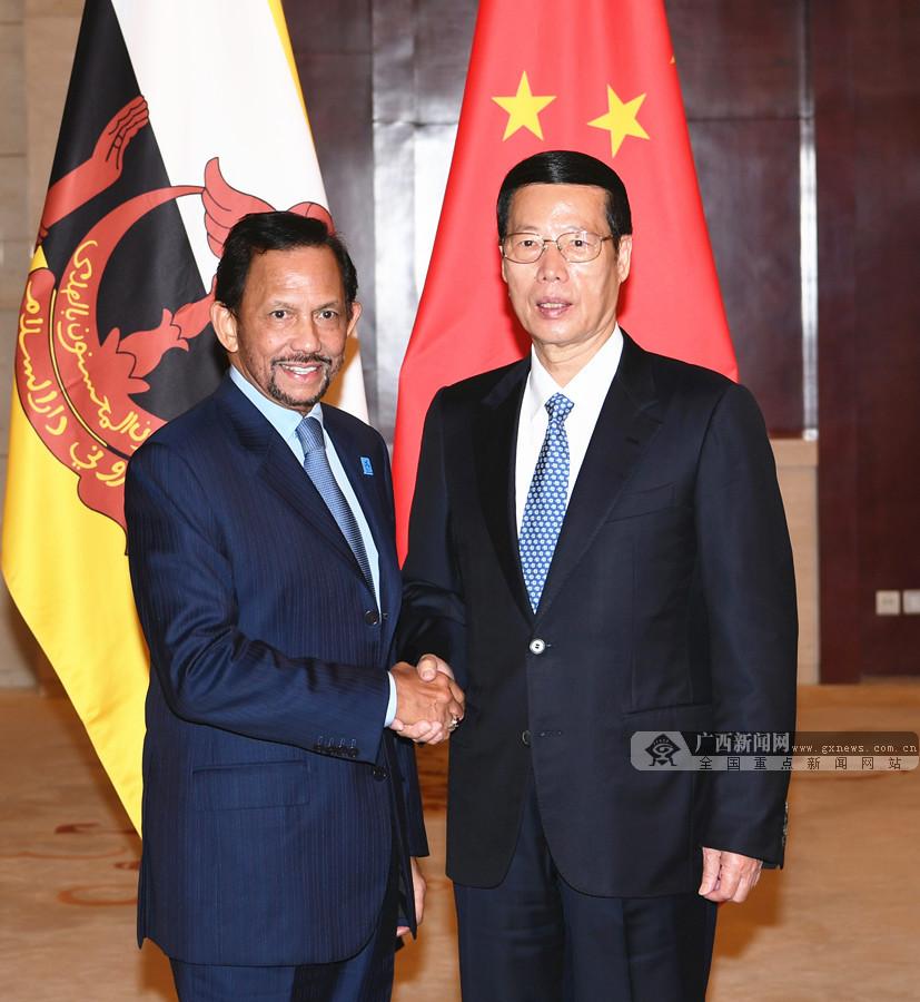 张高丽会见出席第十四届中国-东盟博览会的东盟国家领导人
