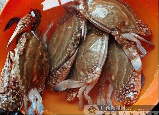 食蟹赏桂中秋夜