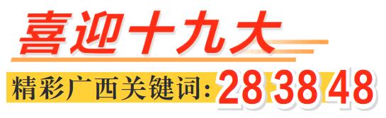 [喜迎十九大 精彩广西关键词]广西:降税减负精准发力稳增长