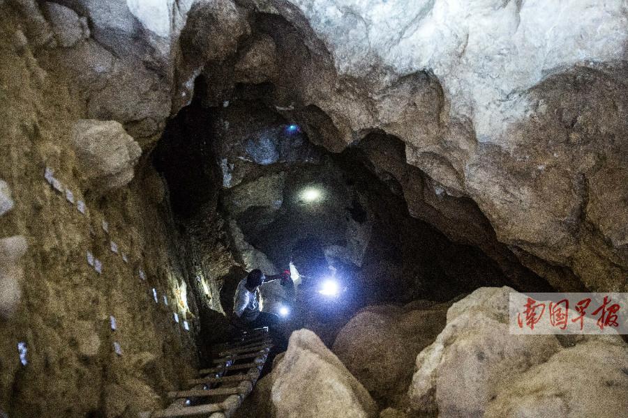 9月30日焦点图:隆安娅怀洞遗址发现人头骨化石