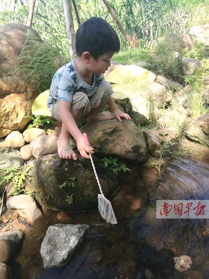 """回乡游寻找童年回忆 度假从""""看世界""""转向""""慢生活"""""""