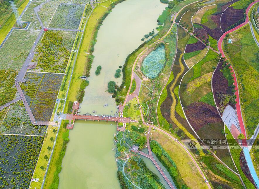 高清:航拍南宁那考河湿地公园