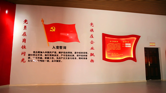 """树旗帜 打品牌  柳城夯实""""两新""""组织党建有形有效"""
