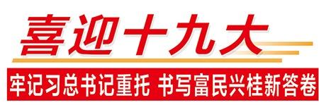 【喜迎十九大】全面深化改革在广西
