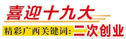 """[喜迎十九大 精彩广西关键词]广西:""""四个下功夫""""推动""""二次创业"""""""