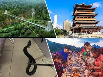 10月12日焦点图:南宁建全国第二长的玻璃桥