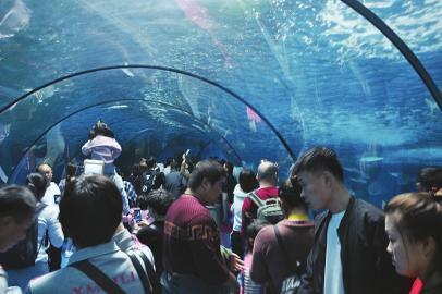 济南都市圈多景区呈井喷式待客全域旅游效应凸显