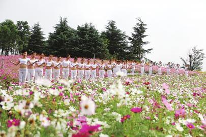 泰安天颐湖的花海 (夏丽苗 摄)