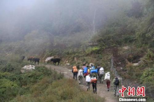 三名驴友违规穿越卧龙自然保护区被困,救援队前往救援途中。 钟欣 摄