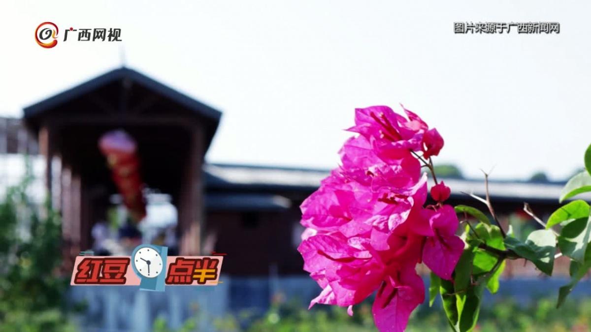 """九百垌:""""一园揽四季""""的休闲观光农业公园"""