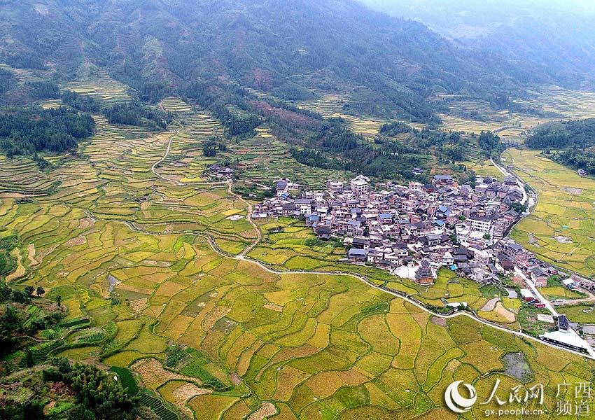 10月20日,无人机航拍的三江侗族自治县良口乡和里村稻田