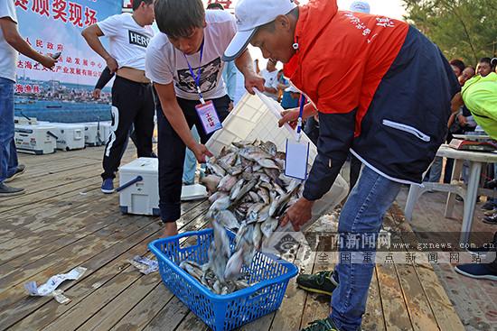 """防城港市""""双十一""""新玩法:将举行国际海上钓鱼大赛"""