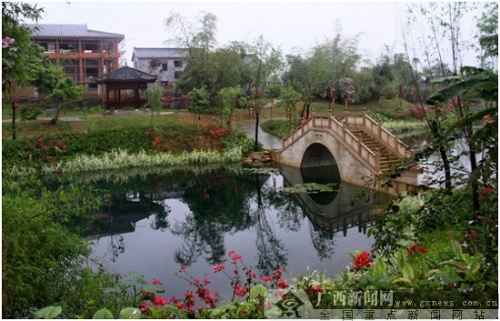 """""""美丽南方""""忠良村"""
